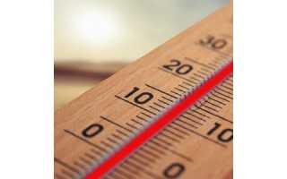 Термометр и его разновидности