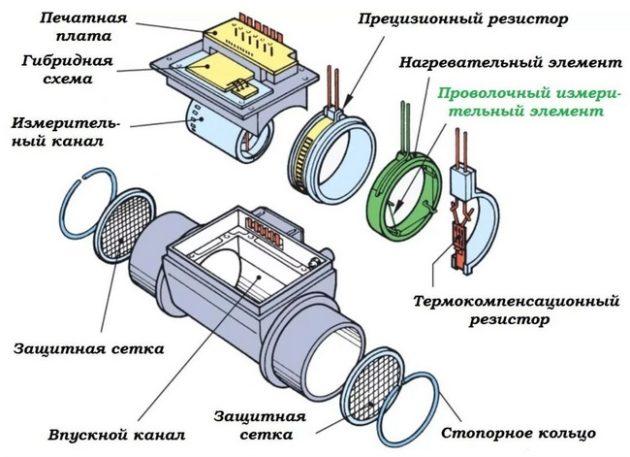 структура дмрв