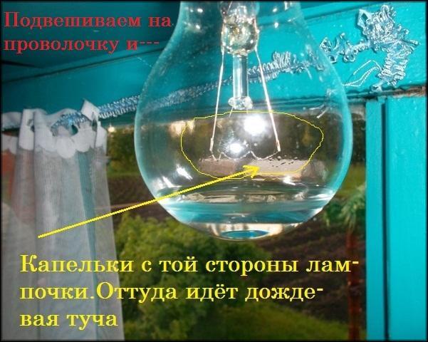 Барометр из лампочки