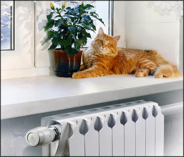 Дома должно быть тепло и уютно