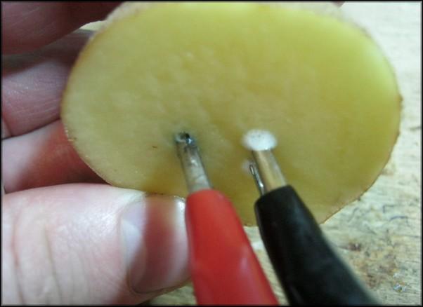 Проверка с помощью картофеля